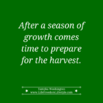 Day 24 – A Season of Growth